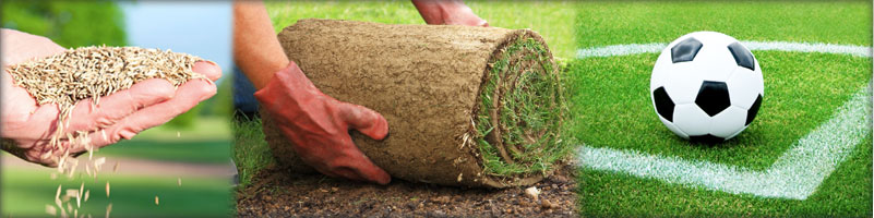 Turf Solutions